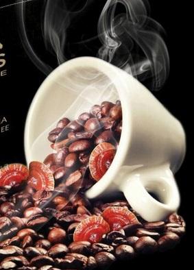 MOSS COFFEE TAZA